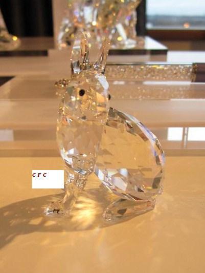 """""""2011 Artic Hare"""""""